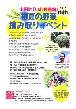 2018 いわき農園初夏の野菜摘み取り.JPG