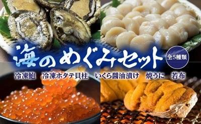 川秀海のめぐみ.jpg
