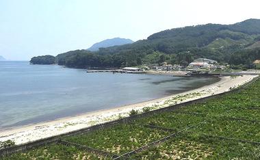 浦の浜.jpg