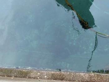 海底.jpg