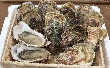 牡蠣(チョイス掲載用).jpg