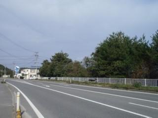 PA301464-5.jpg