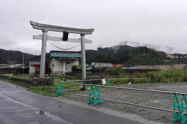 oosugi.jpg
